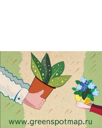 бесплатная открытка по почте от фирмы цветочный кроссинг - 13 01 2015