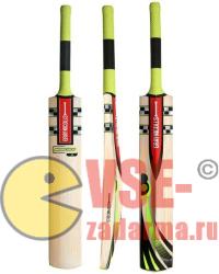 бесплатная палочка для игры в крикет 2014